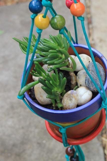Macrame succulent pot hanger workshop