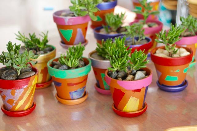 painted succulent pot workshop