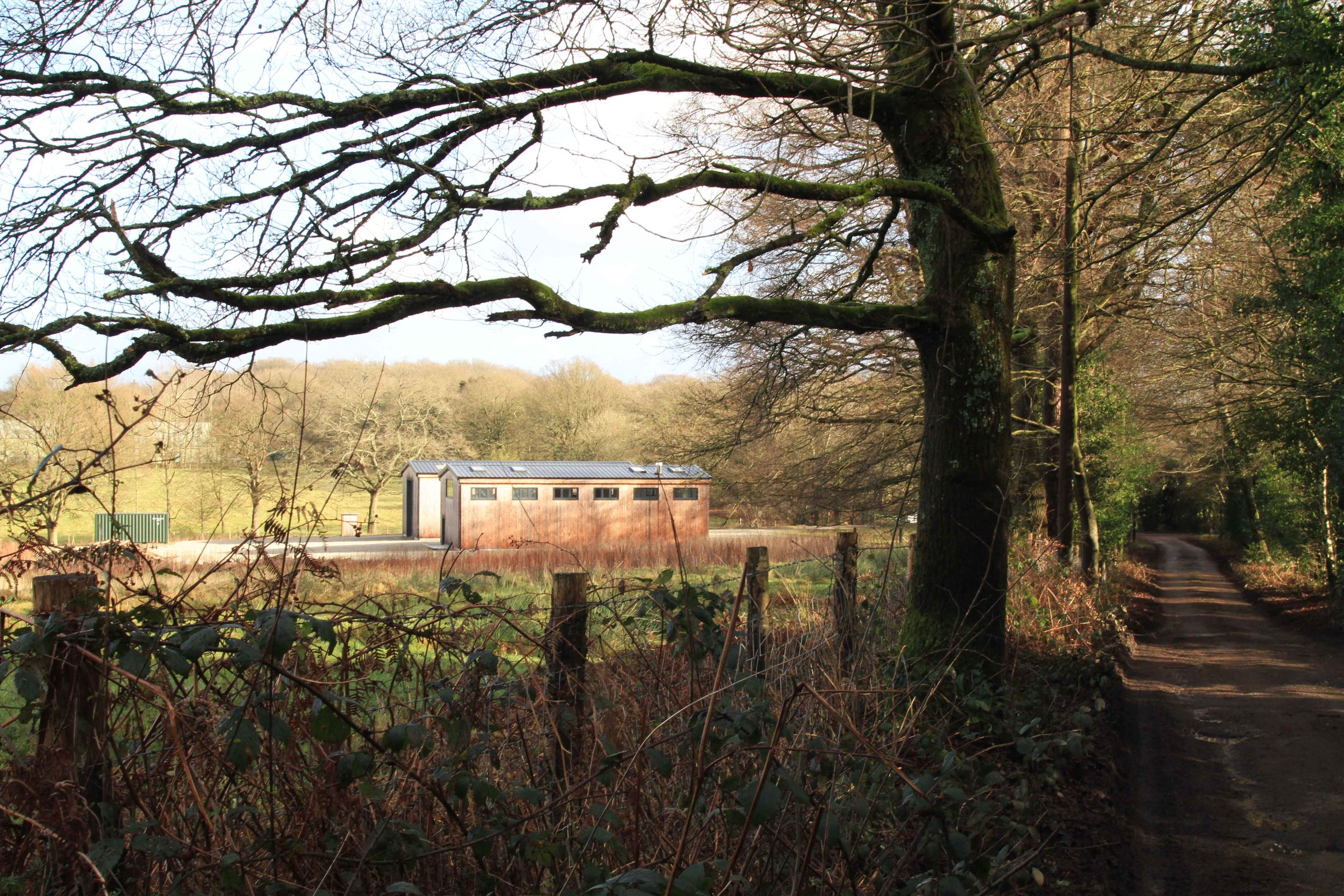 Reeves-Transport Planning-Blind-Mans-Wood