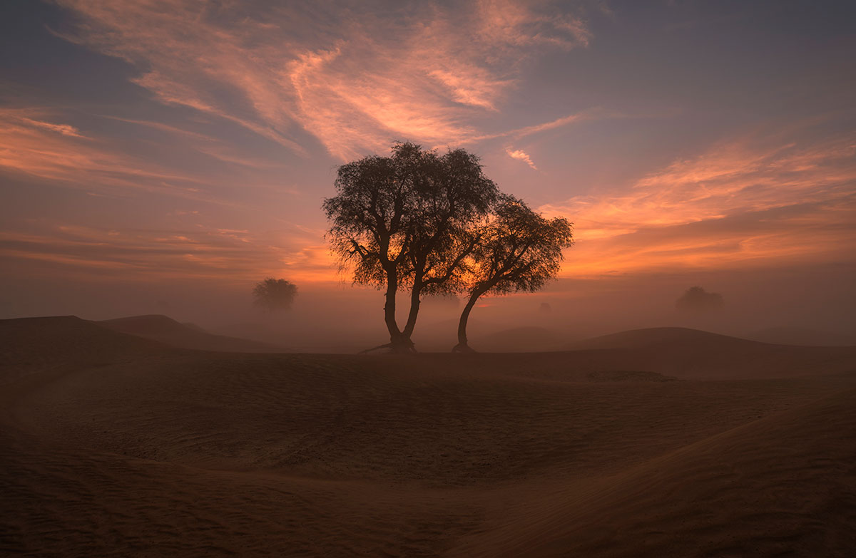 Maleha desert in Sharjah