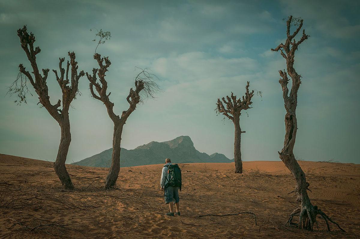 Al Faya desert in Maliha Sharjah