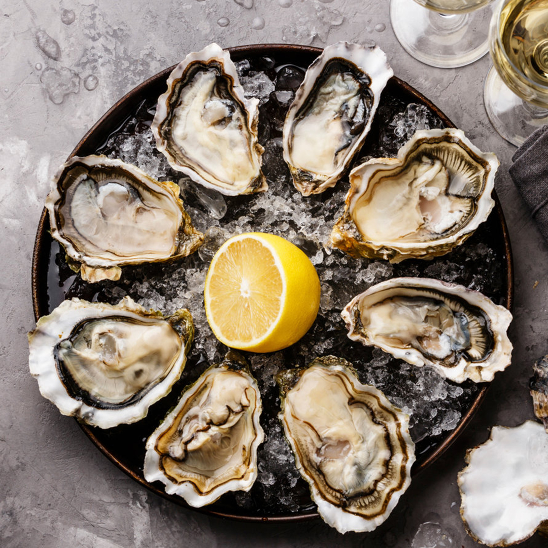 OYSTERS & CO   OYSTERS BAR