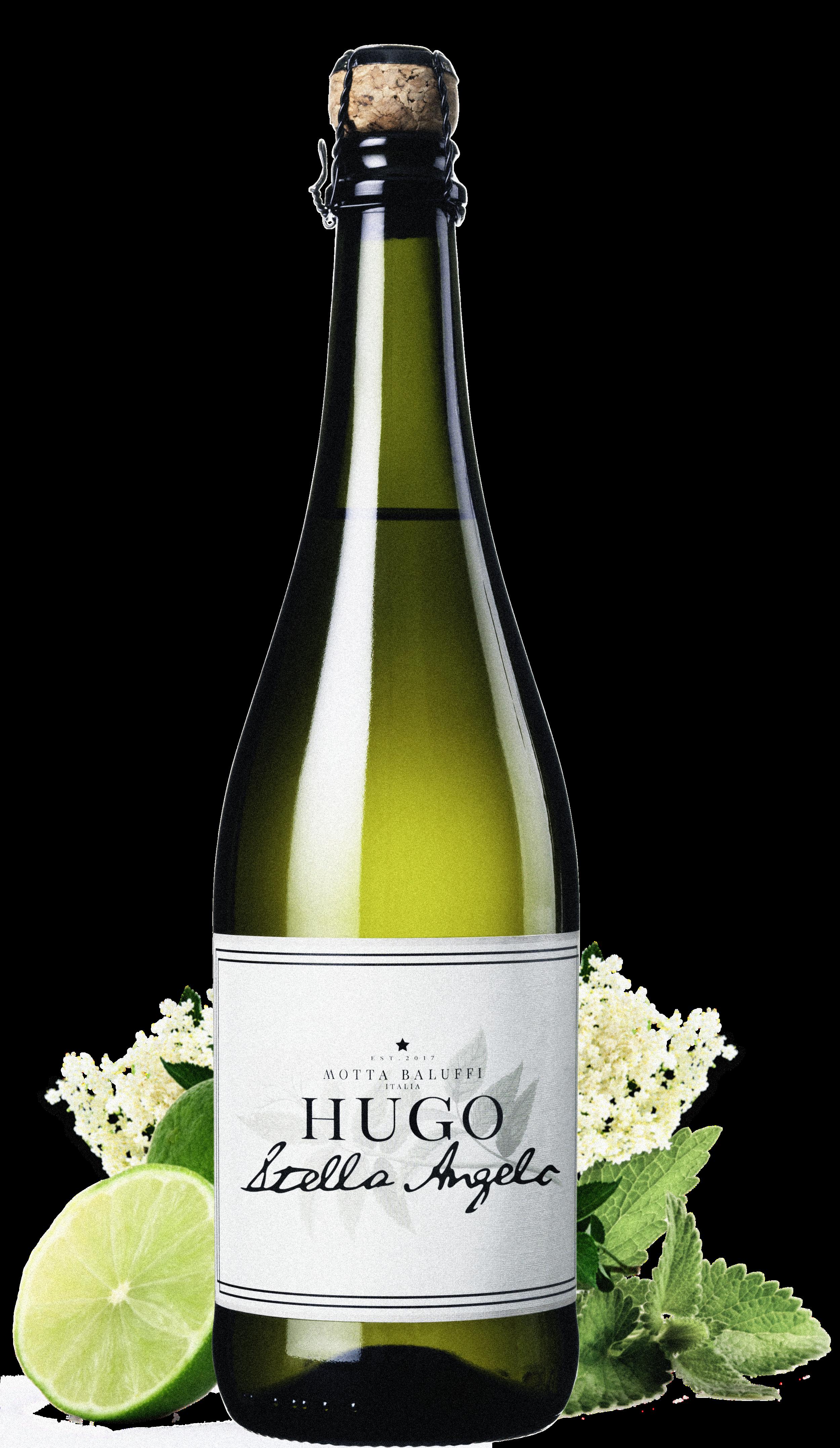 Hugo - Stella Angelo_final_fr.png