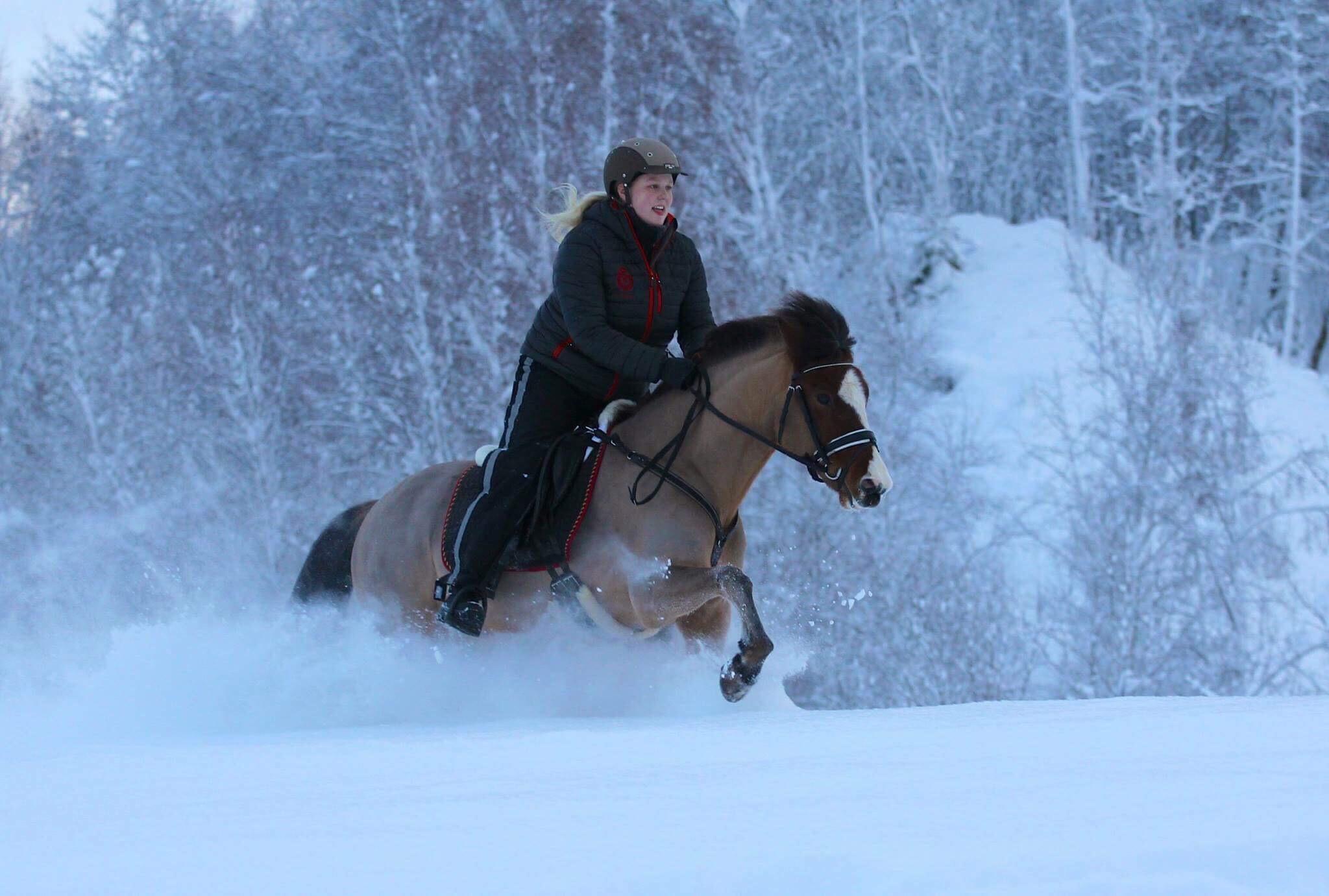 hesteridning fjellsportfestivalen.jpeg