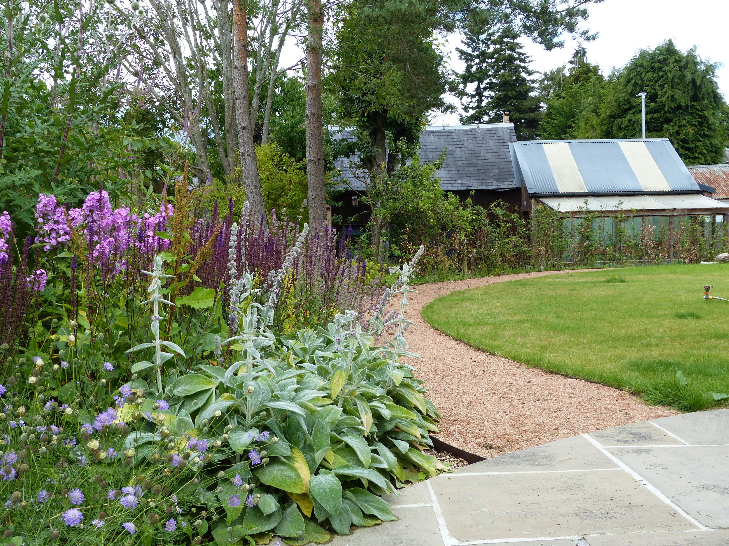 Curved gravel path and perennial plants