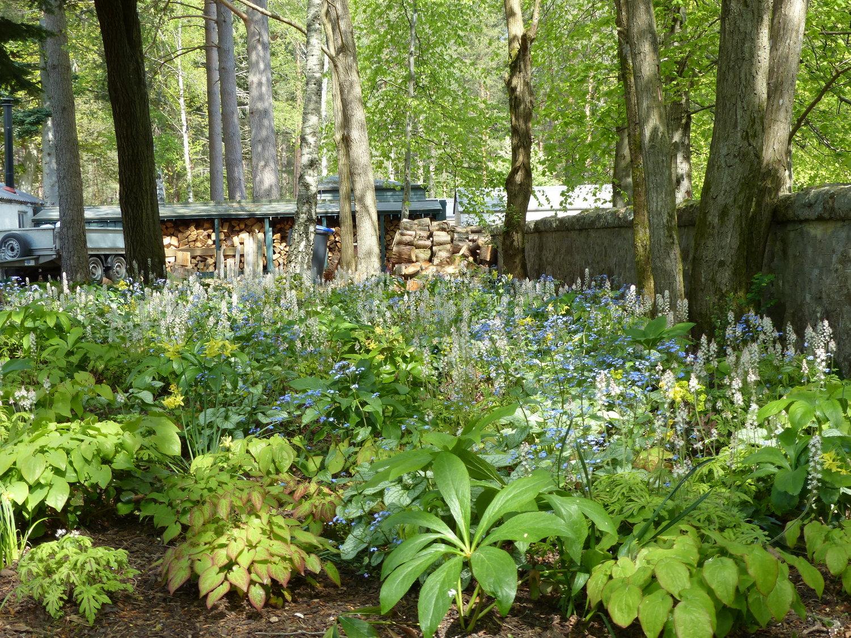 Heather Dale Garden Design Garden Designers For Aberdeen And Aberdeenshire Scotland Uk