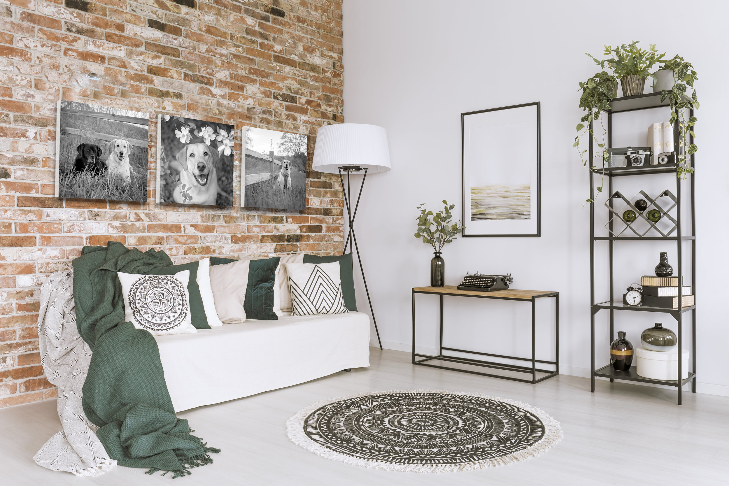 A HOUSE BECOMES A HOME - When there is photography on the walls...