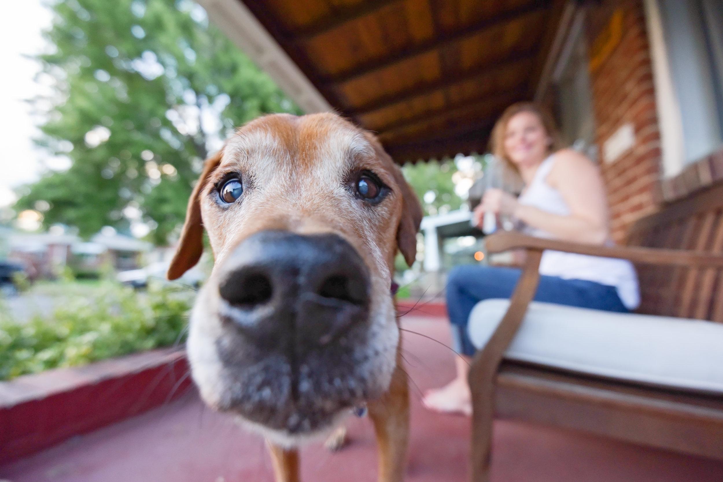 Meg and Wally-027.jpg