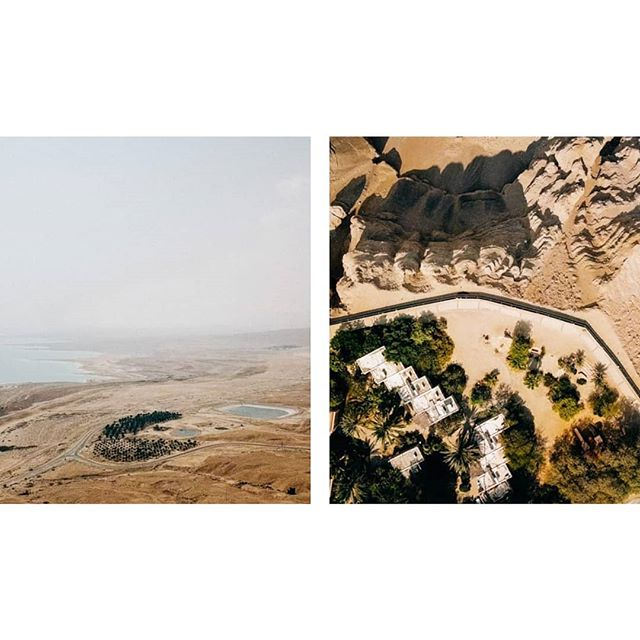In the mood for palm trees and drone flights 🏜  #becausetherain #tb #eingedi #reserve #deadsea #wanderlust #nature #exploretocreate #artofvisuals #fromwhereidrone #wanderingfilmmakers #wfdaily