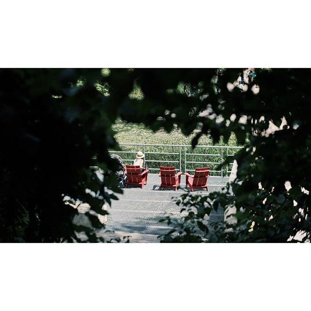 Sunday, Sunday at: @evergreen_brick_works 📍  #sundayfamilyday #whattodointoronto #exploringto #exploretocreate #artofvisuals #evergreenbrickworks #nature #humansoftoronto #documentingreality #wanderlust #wfdaily #wanderingfilmmakers