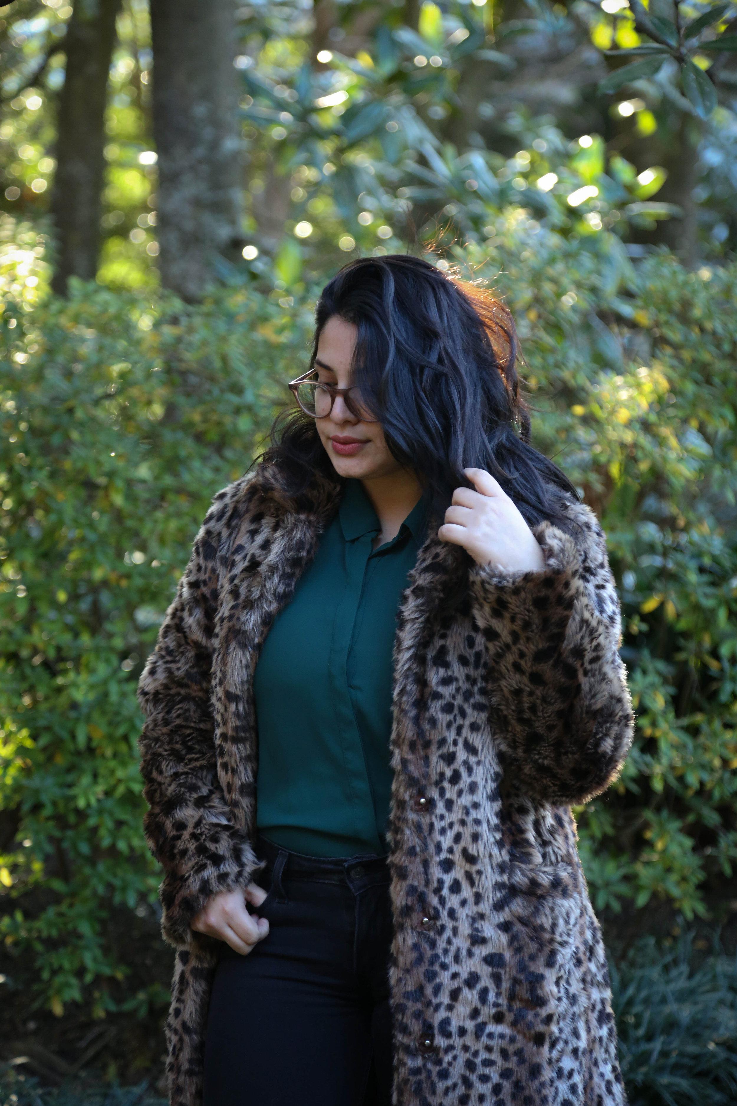 Leopard (3 of 16).jpg