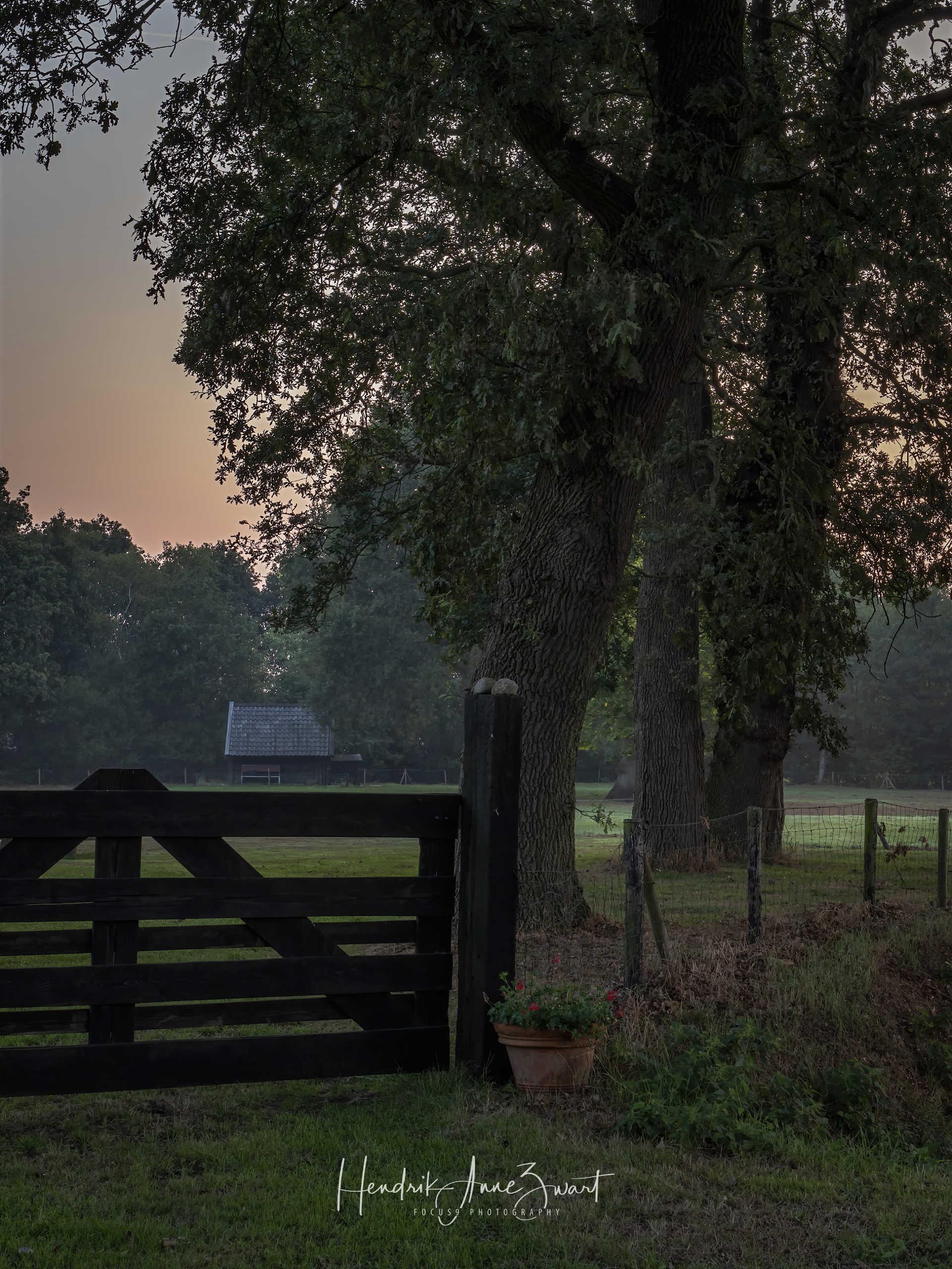Zwiggelte_Farm_Netherlands_1.jpg