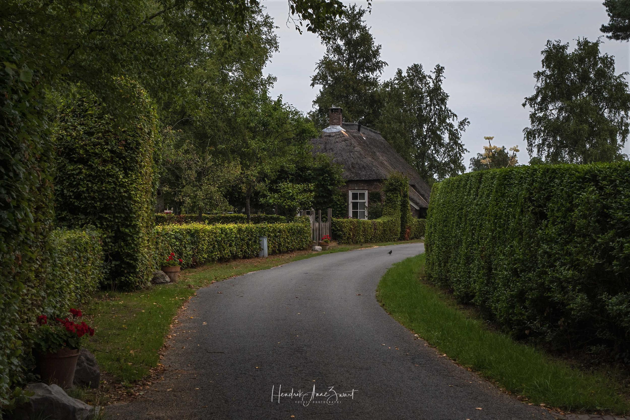 Zwiggelte_Street_Netherlands_1.jpg