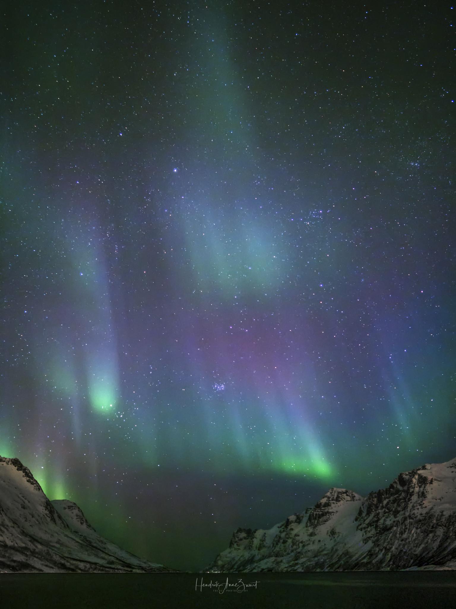 Nordic_Light_Northern_Lights_Ersfjordbotn_8_Norway.jpg