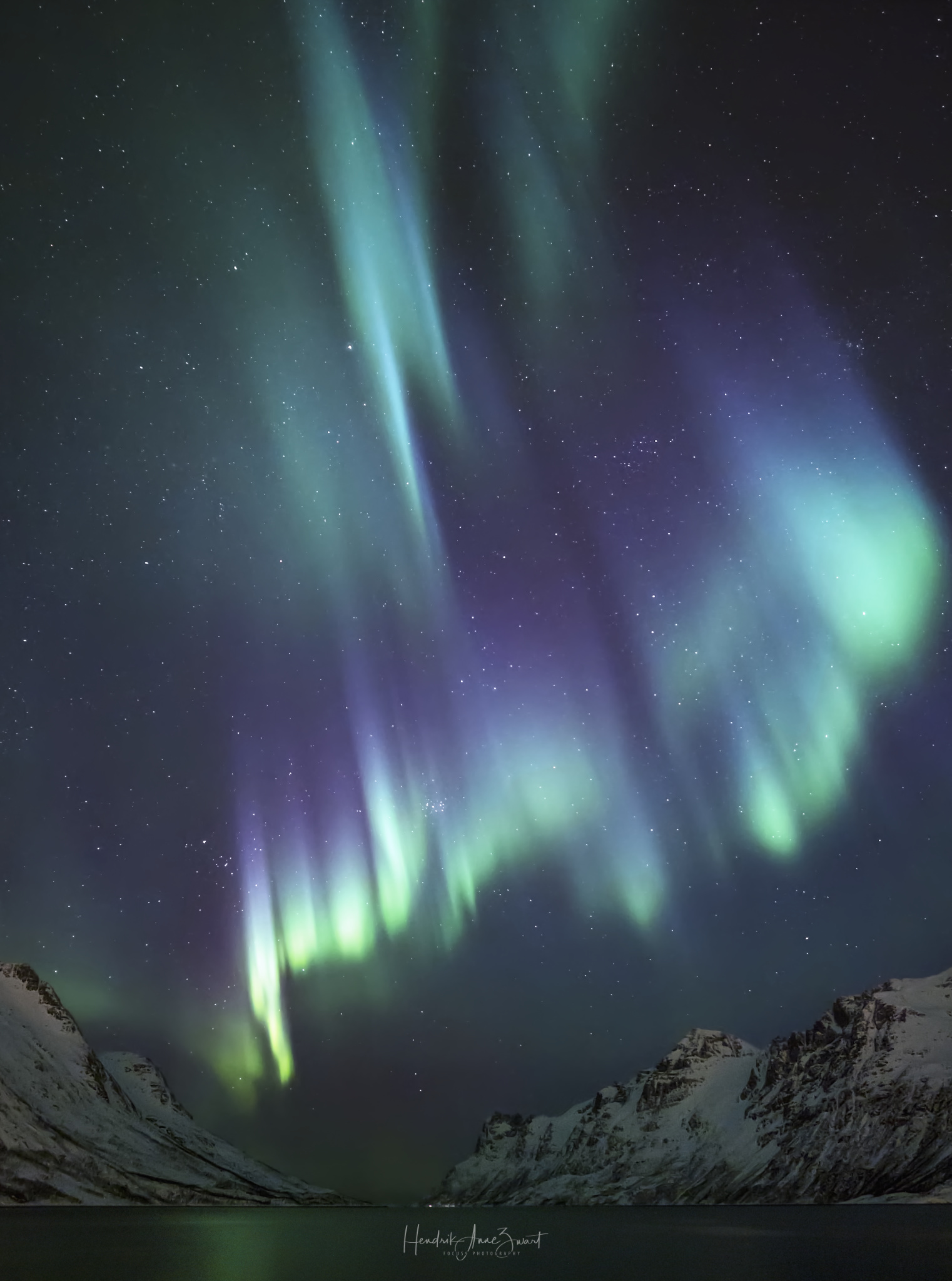 Nordic_Light_Northern_Lights_Ersfjordbotn_7_1_!Norway.jpg