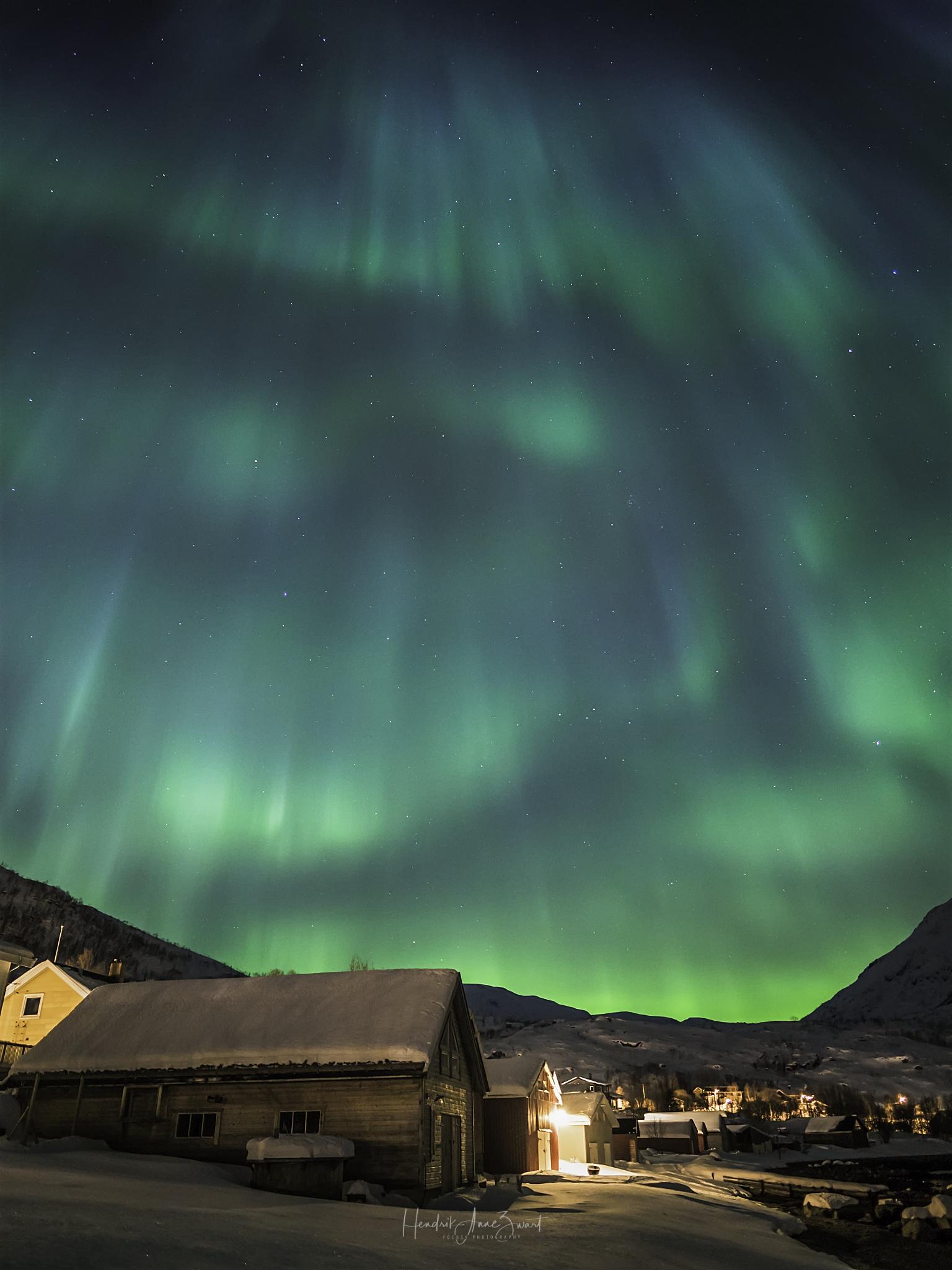 Nordic_Light_Notthern_Lights_Norway_Ersfjordbotn_5.jpg