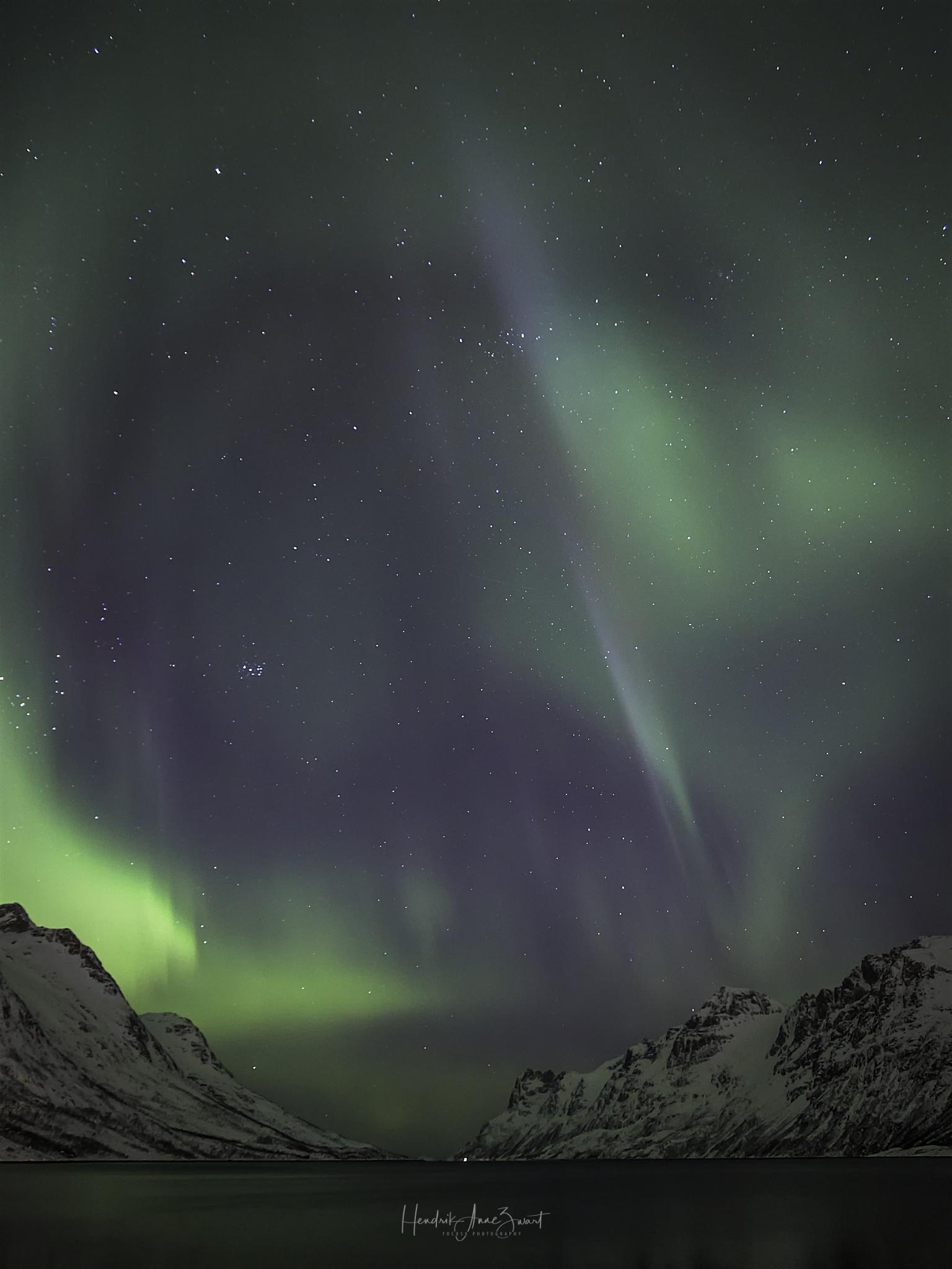 Nordic_Light_Notthern_Lights_Norway_Ersfjordbotn_1.jpg