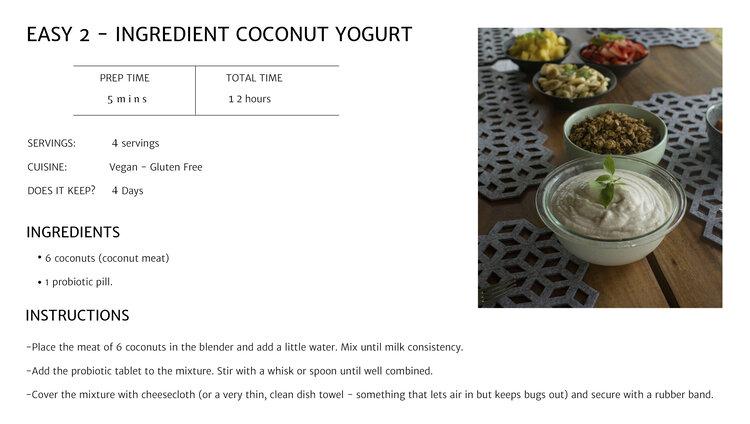 coconut yogurt receta imagen.jpg