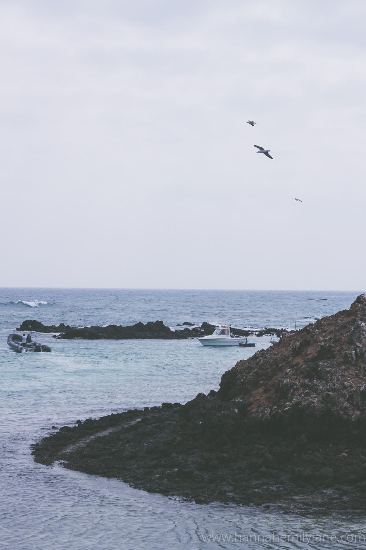 Fuerteventura, Canary Islands   www.hannahemilylane.com-16.jpg