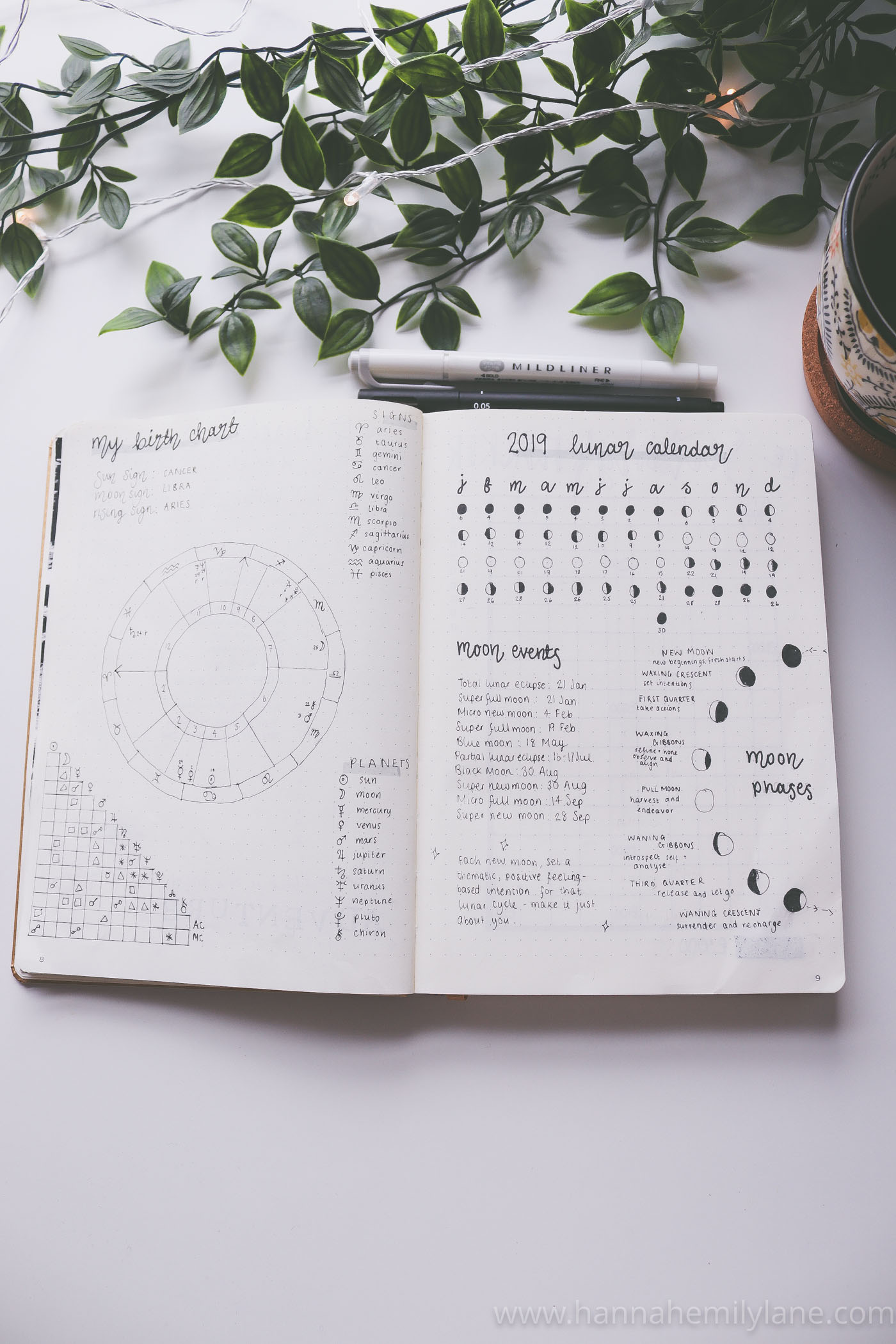 My 2019 Bullet Journal Setup  | www.hannahemilylane.com