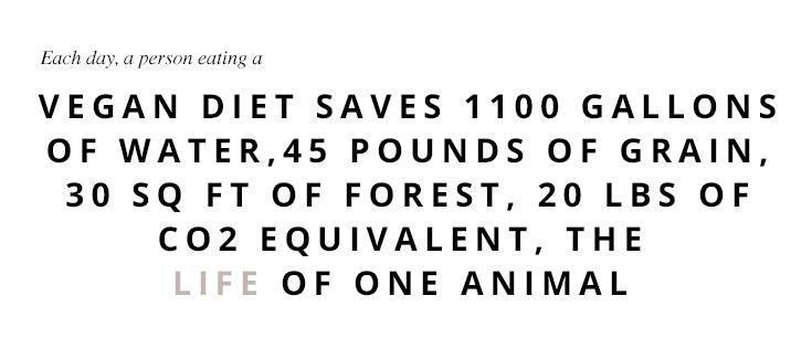 Vegan quote | www.hannahemilylane.com