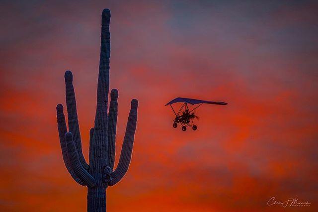 A power hang glider making a loop in the desert over at sunset Pleasant Valley Airport north of Phoenix. . . . #instagramaz #az365 #azfamily #az #goexploreaz #arizonalife #arizonahighways #igsouthwest #visitarizona #cbs5az #beon12 #fox10phoenix #nikonD750 #haidafilters #unrealaz #onlyinaz #onlyinaz2018 #desertlife #exploreaz #azlife #azcentral  #everythingarizona  #clouds #sunset #saguaro #arizonaisgorgeous #powerhangglider #flying #flight