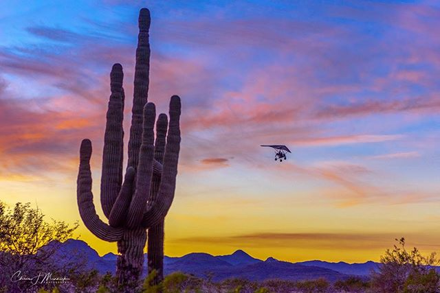 A power hang glider gets a great view of the sunset near Pleasant Valley Airport north of Phoenix. . . . #instagramaz #az365 #azfamily #az #goexploreaz #arizonalife #arizonahighways #igsouthwest #visitarizona #cbs5az #beon12 #fox10phoenix #nikonD750 #haidafilters #unrealaz #onlyinaz #onlyinaz2018 #desertlife #exploreaz #azlife #azcentral  #everythingarizona  #clouds #sunset #saguaro #arizonaisgorgeous #powerhangglider #flying #flight