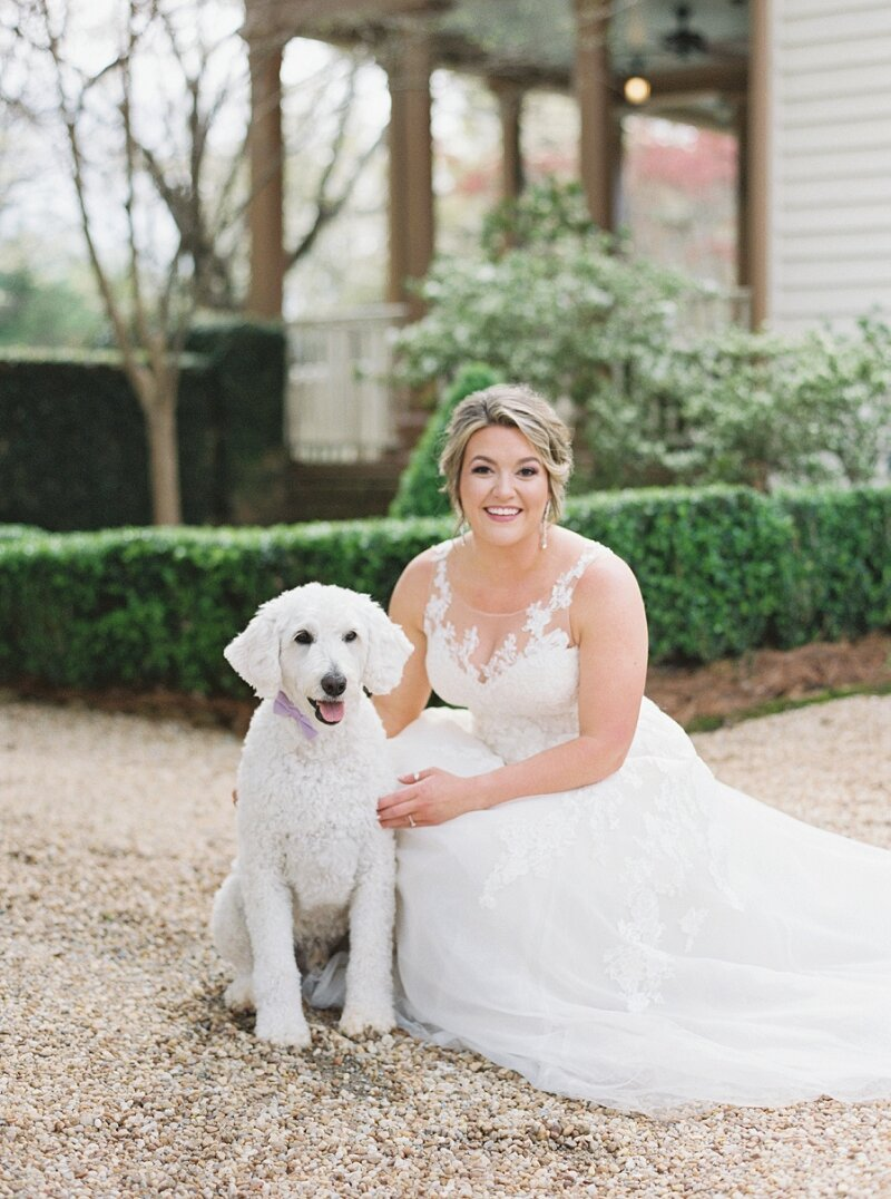 Wedding Photo with Dogs