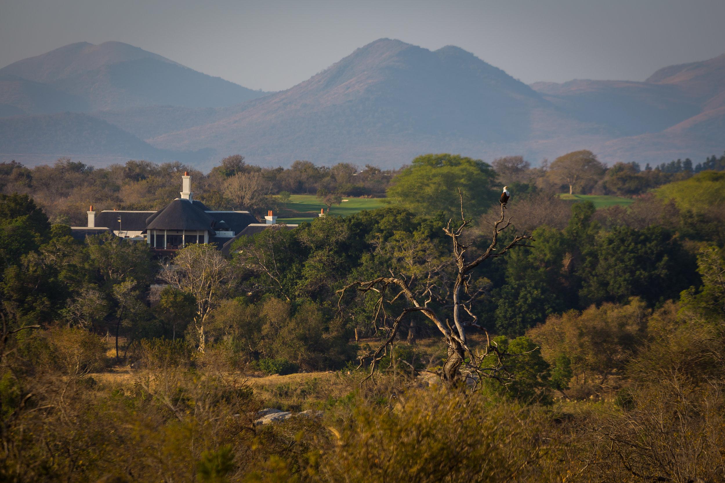 Kruger National Park World Challenge (6).jpg