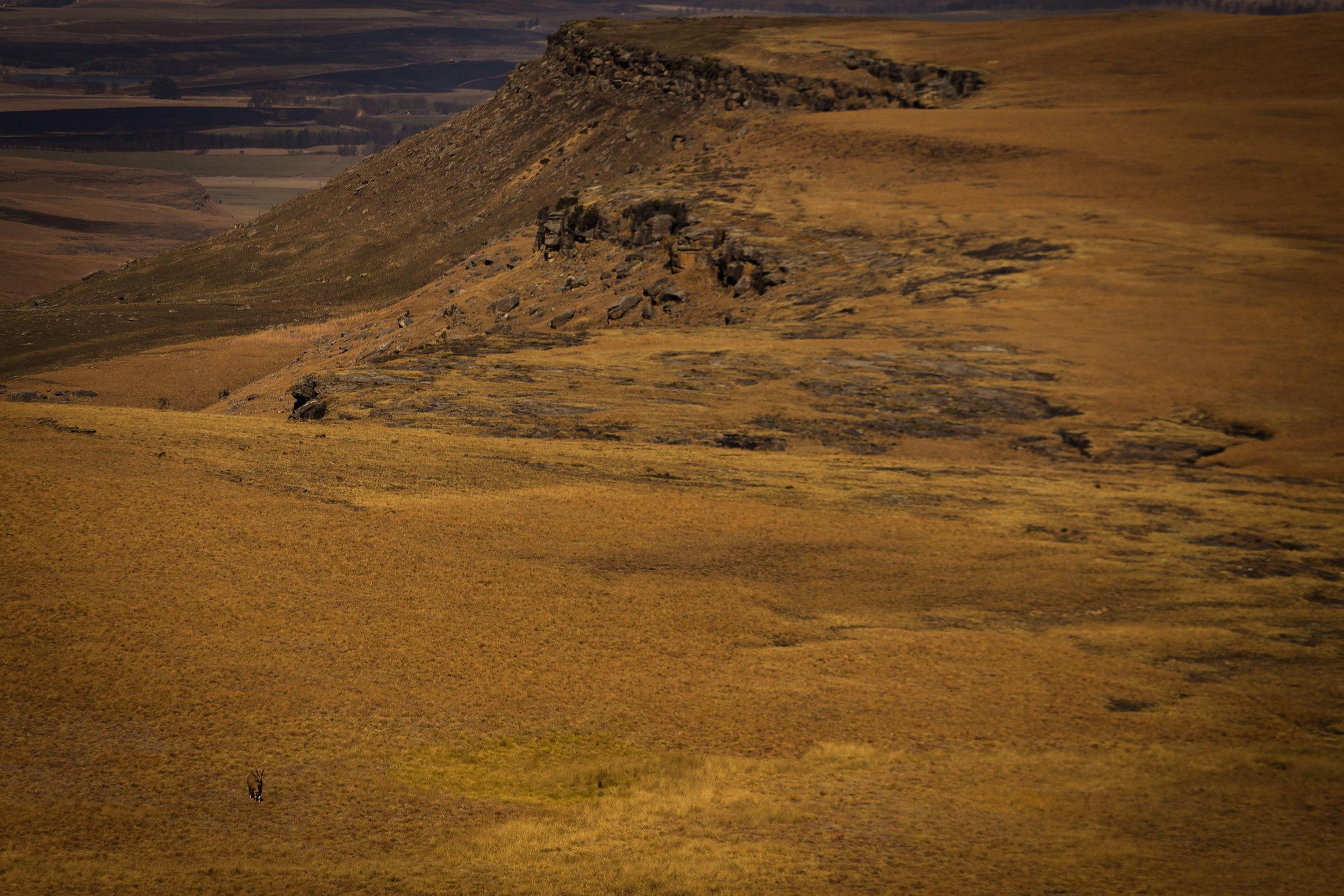 Giants Cup Trail Drakensberg Mountains (6).jpg