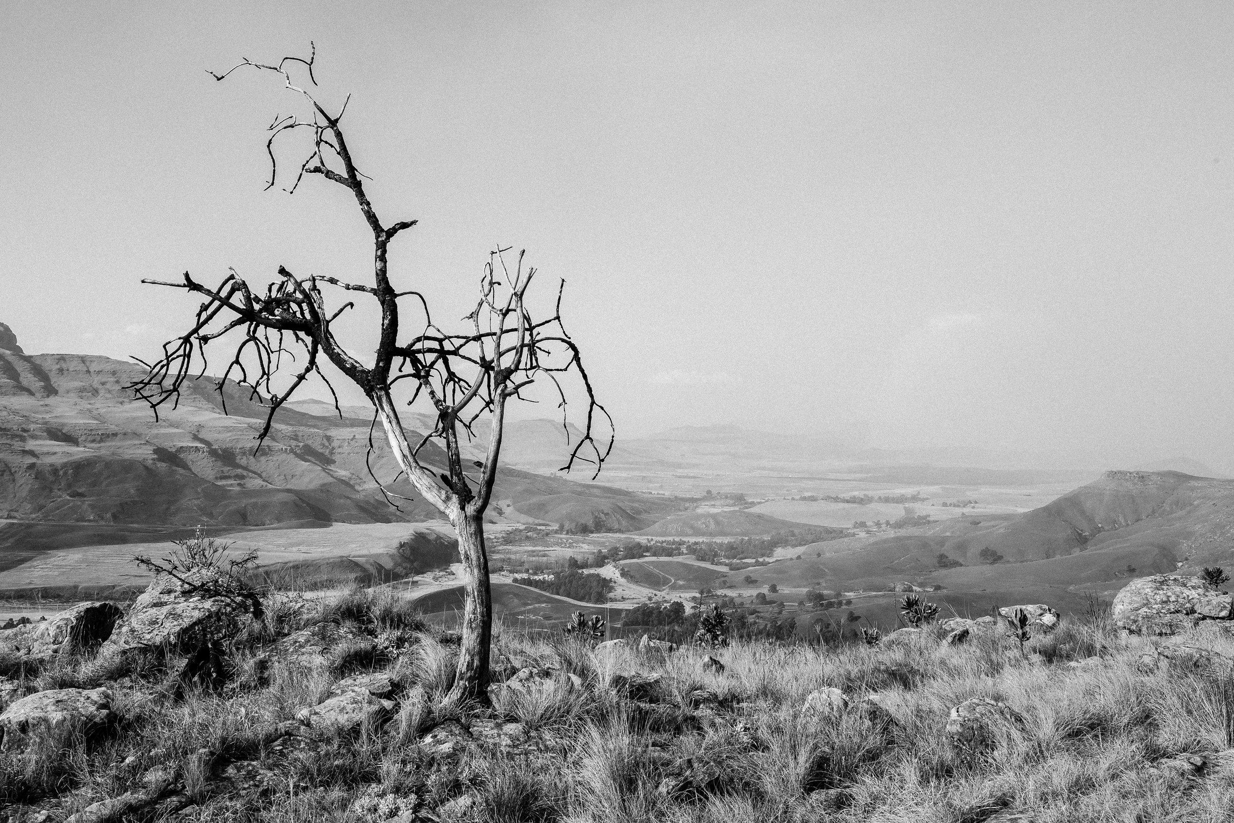 Giants Cup Trail Drakensberg Mountains (29).jpg