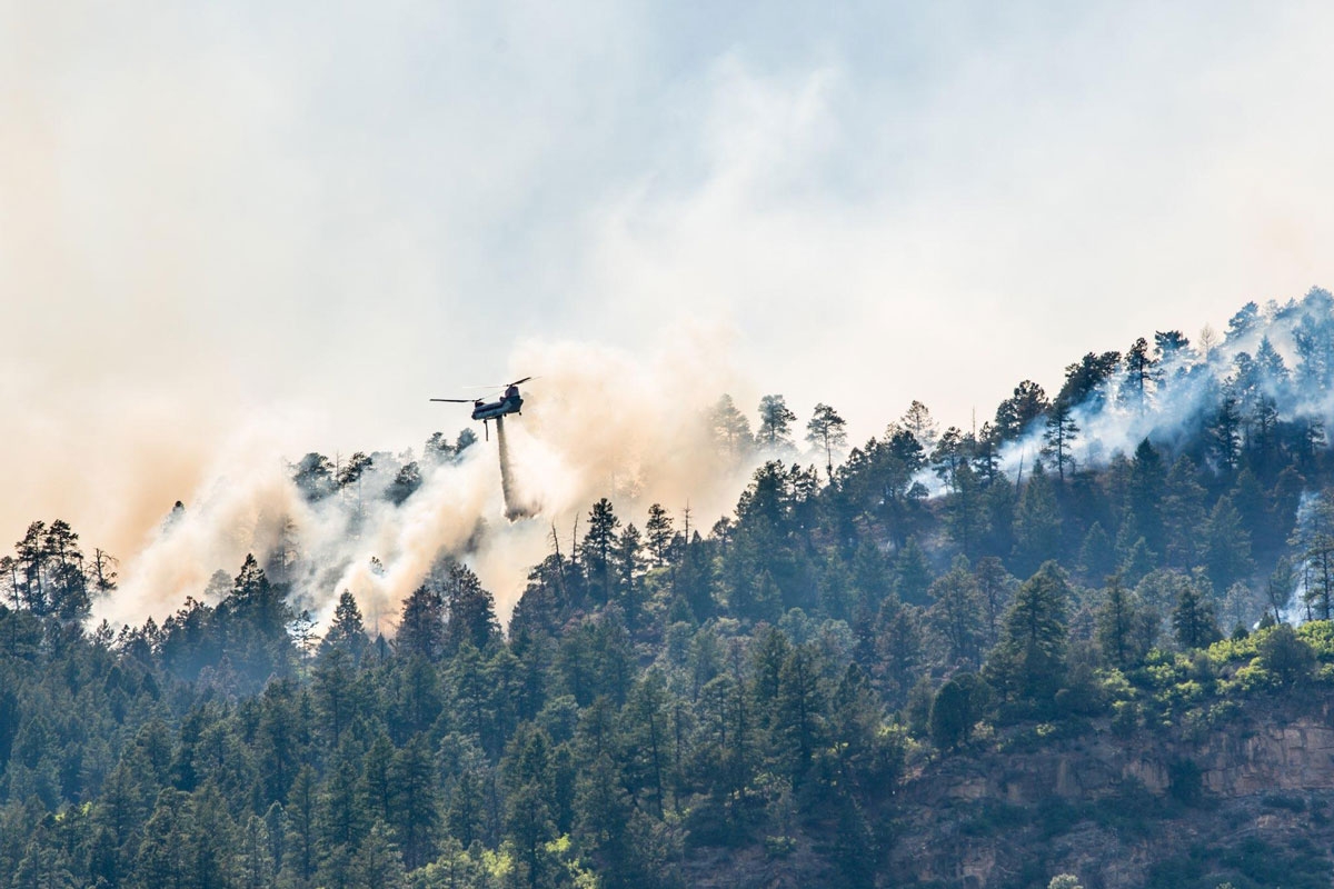 Firefighters working to control the 416 Forest Fire - Photo by Andrew Rios