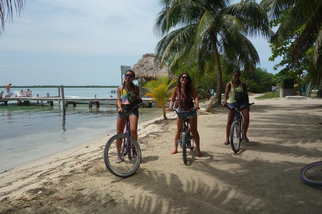 Smoking-Trees-in-Belize1.jpg