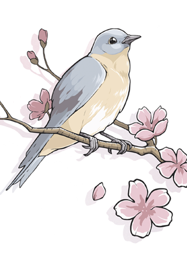 BlueBird-WEB.png