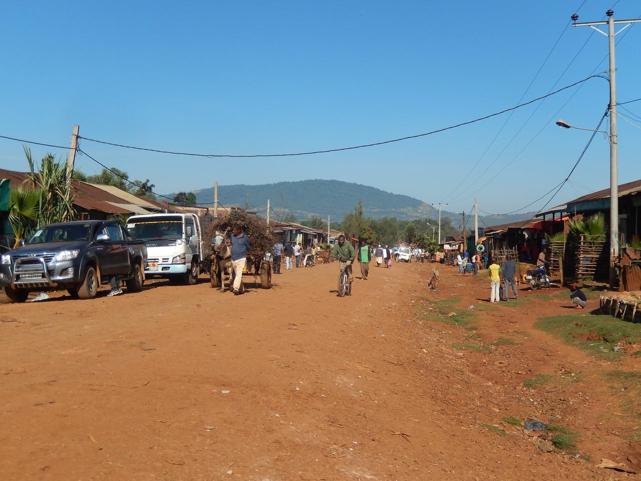 ethiopia-biftu-gudina-4.jpg