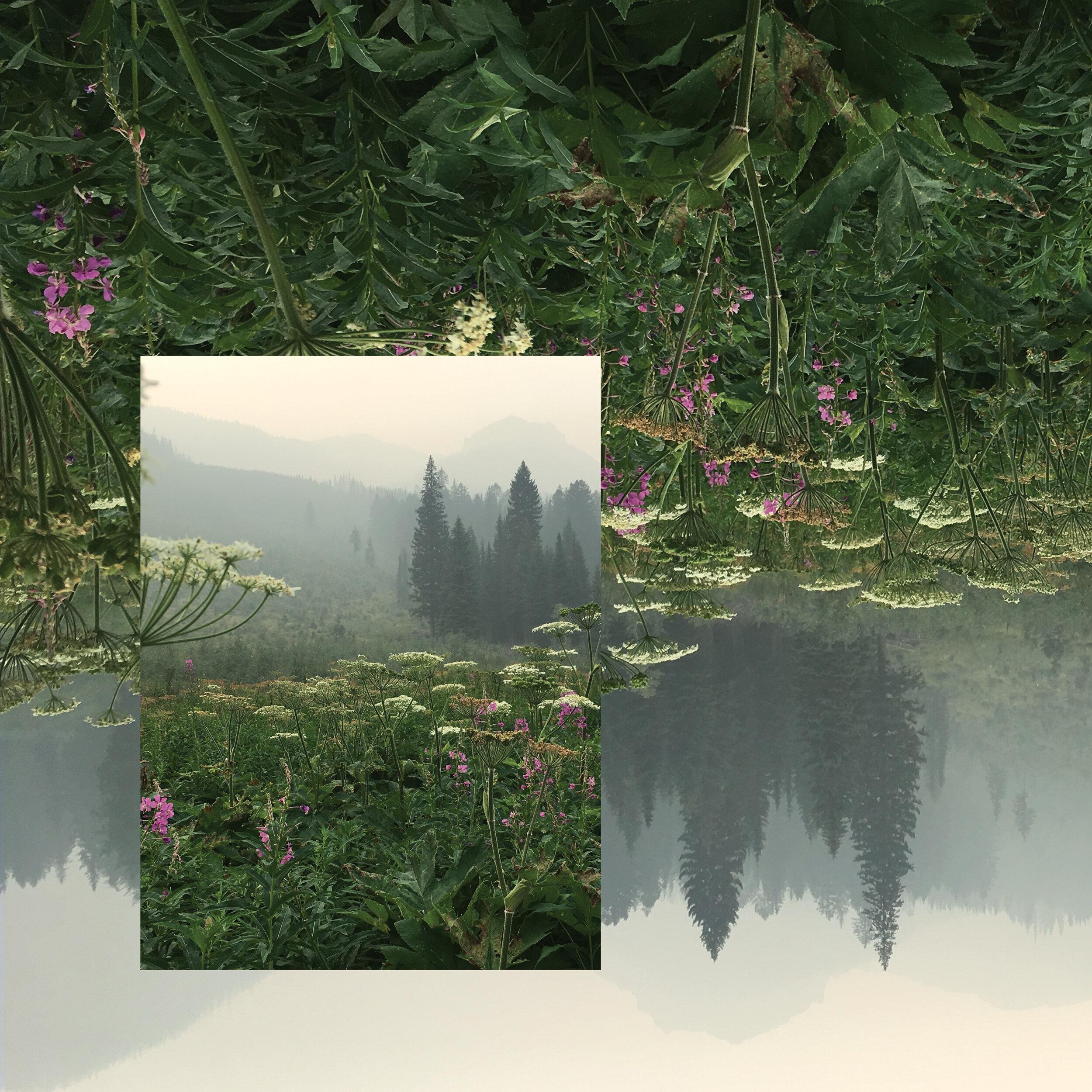 TeenDaze-Bioluminescence-Remix-DigitalCoverArt-2500px72dpi.jpg
