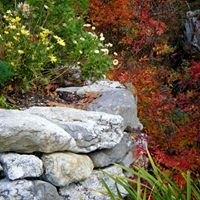 old stone wall in East Boothbay