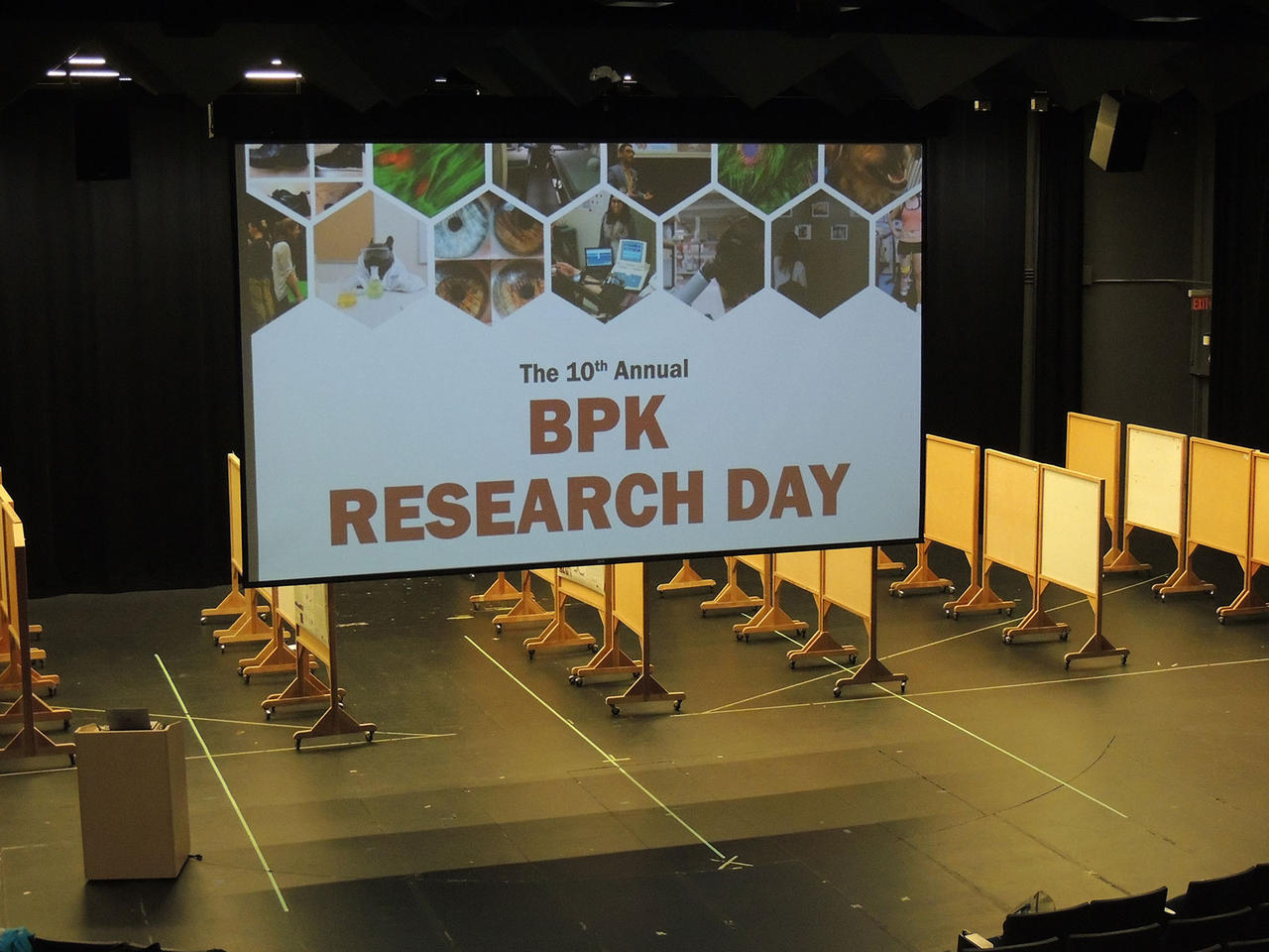 Setting up for BPK Research Day 2019; the poster boards await their content.