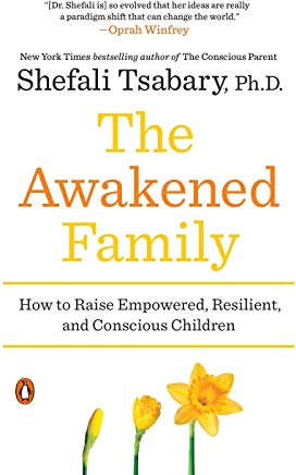 awakened family book cover.jpg