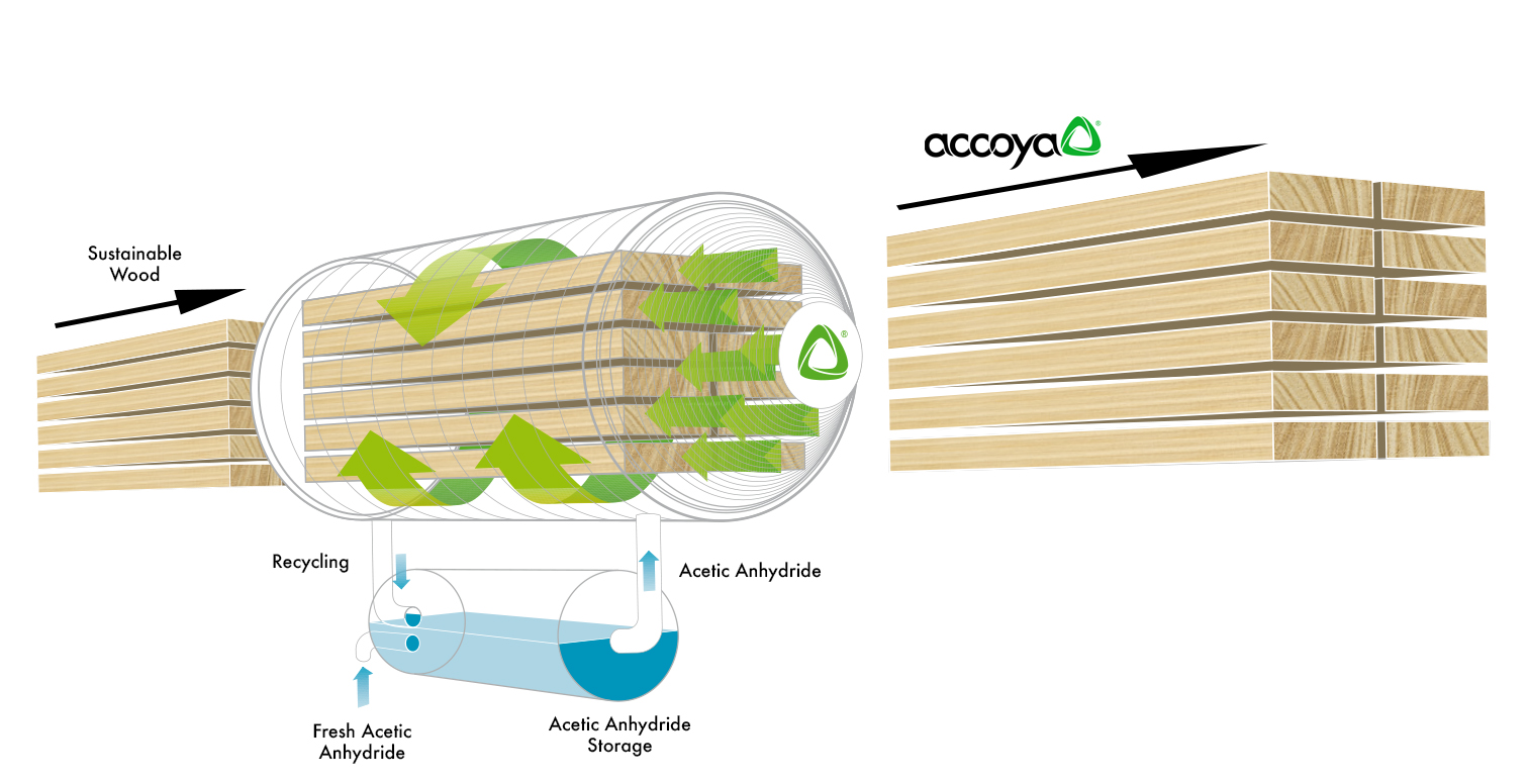 Accoya Production.jpg