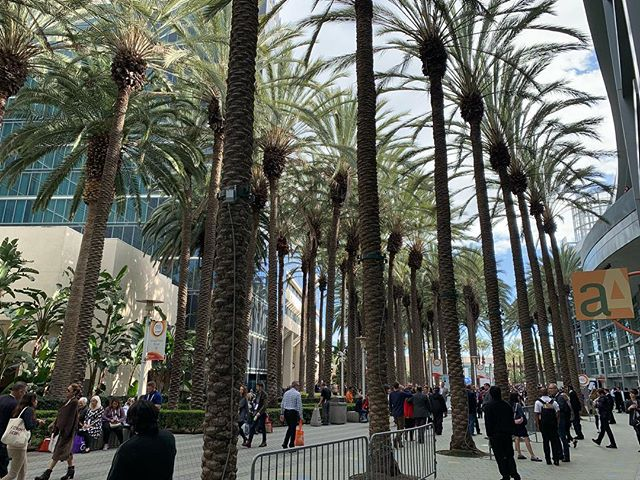 If you're an international natural food brand looking to launch or grow your brand in the US, Expo West is the place to be 🌴 #expowest2019 #goglobal