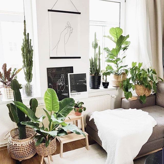 Cozy corner + a good read... yes please! 📷@thepottedjungle