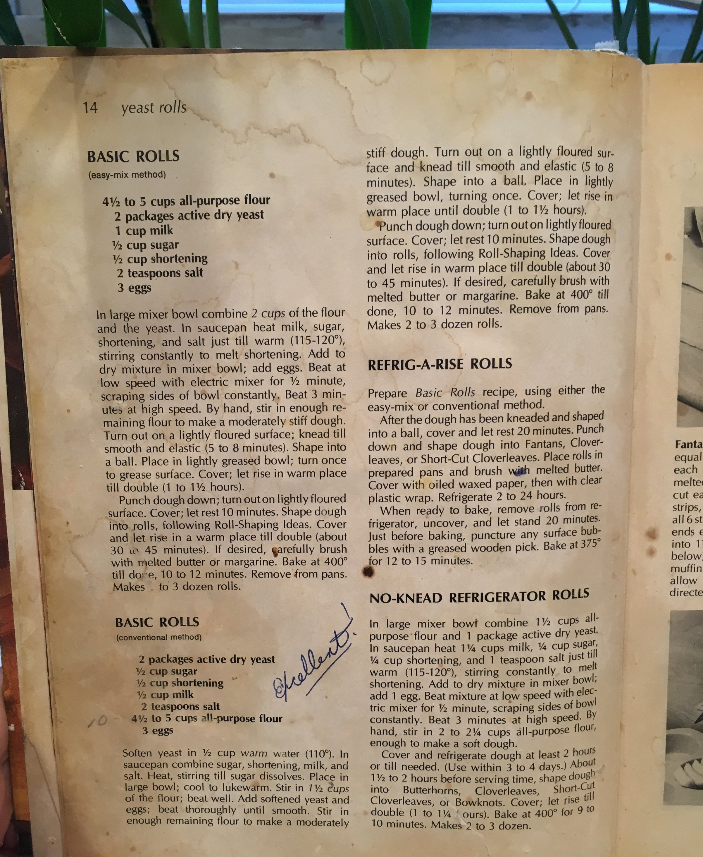 "I would like you to note that sometimes people put filters on stuff to make it look older, or antique. I believe this cookbook qualifies for ""old"" all on it's own. That's not a filter on there. That? Right there? That is a Crisco stain."