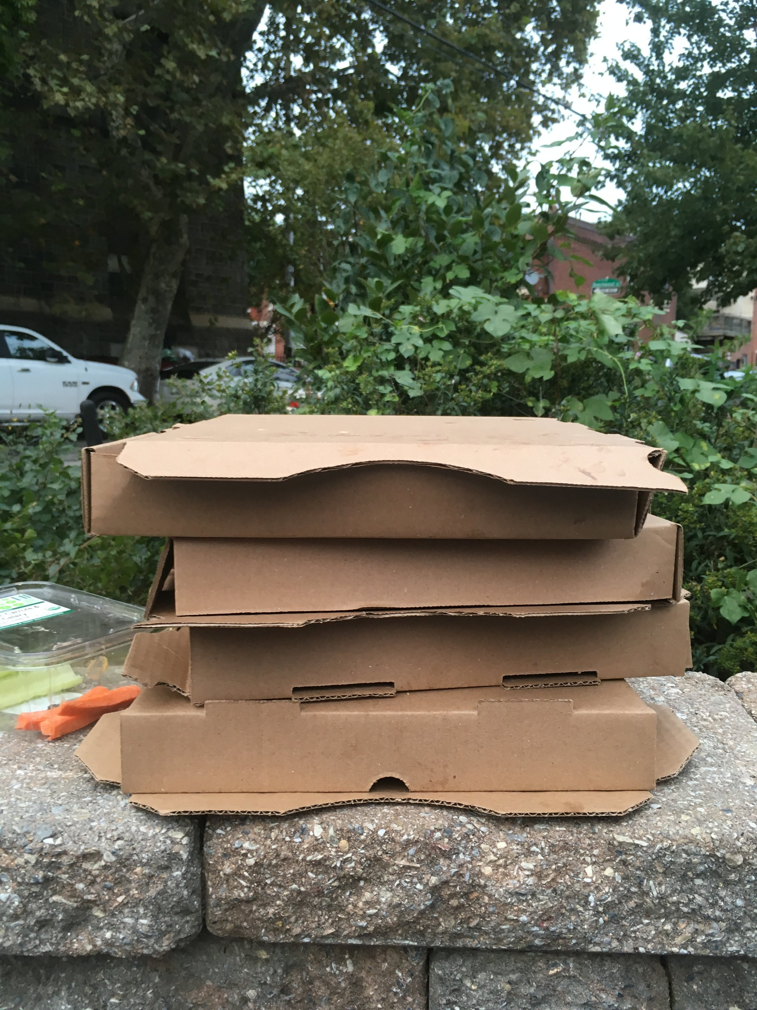 Wish I was piling up pizza boxes instead of mail. But you see those carrot sticks? That's how you know a grown up was at this pizza party.