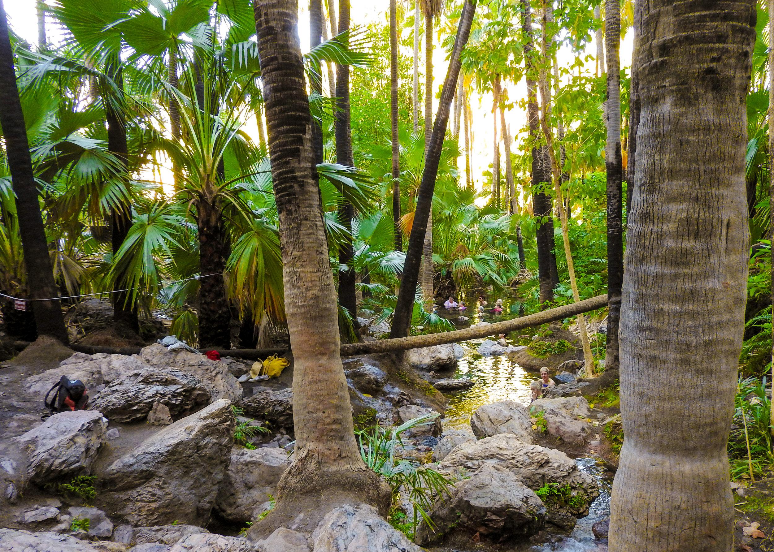 Zebedee Springs at El Questro