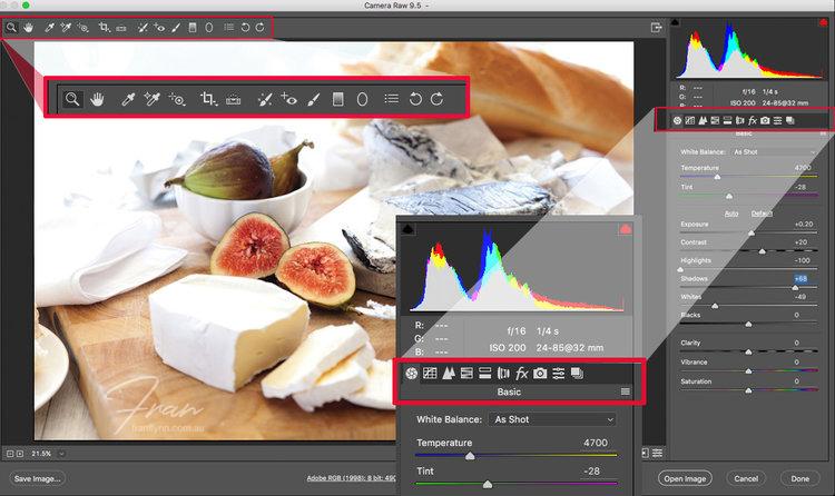 Camera RAW version 9.5 interface
