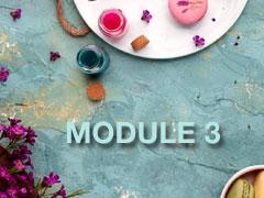 Module3Graphic.jpg