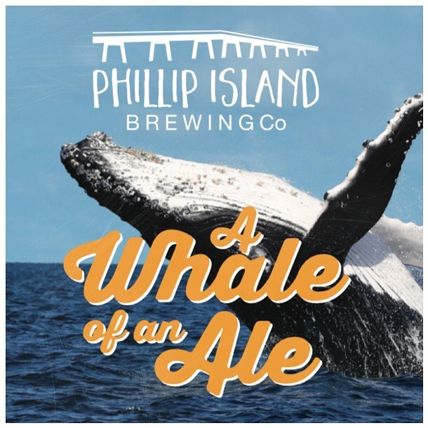 To coincide with the upcoming Whale Festival, we will be releasing our A Whale of an Ale in the coming weeks, available on tap and take home packs.🍻 . . . . #phillipislandbrewingco #craftbeer #craftbeerlife #whalefestival #whaleofanale #ale #ontap #takeaway