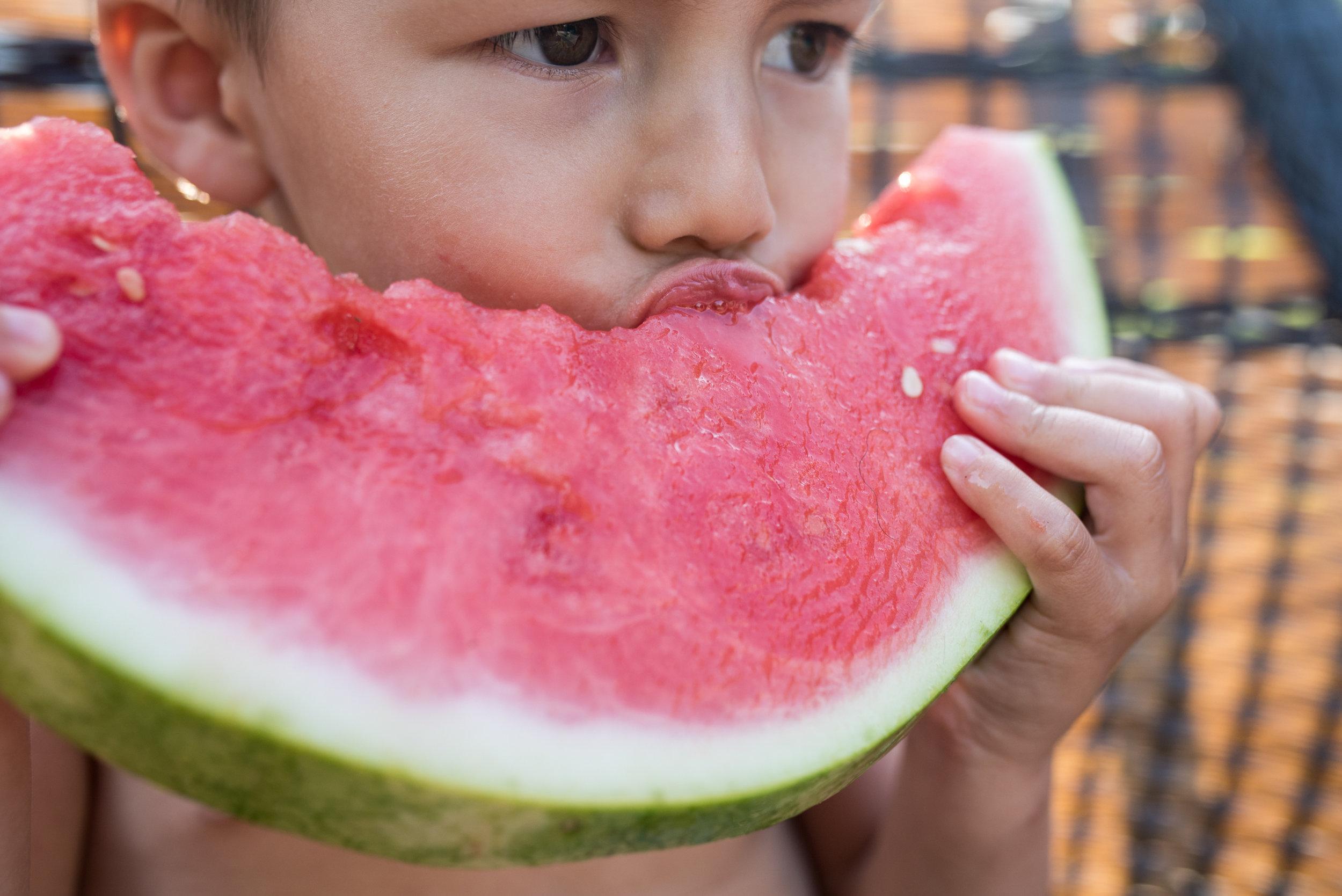 Kari Gierach Photography, Milwaukee Wisconsin documentary family photographer, Mukwonago wisconsin toddler boy eating watermelon in summer-1.jpg