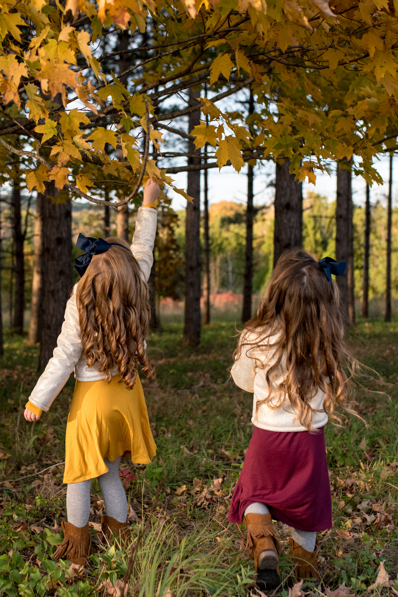 Two girls with long hair reaching for fall leaves in a tree